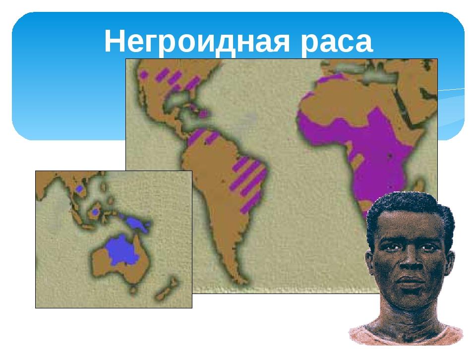 Негроидная раса