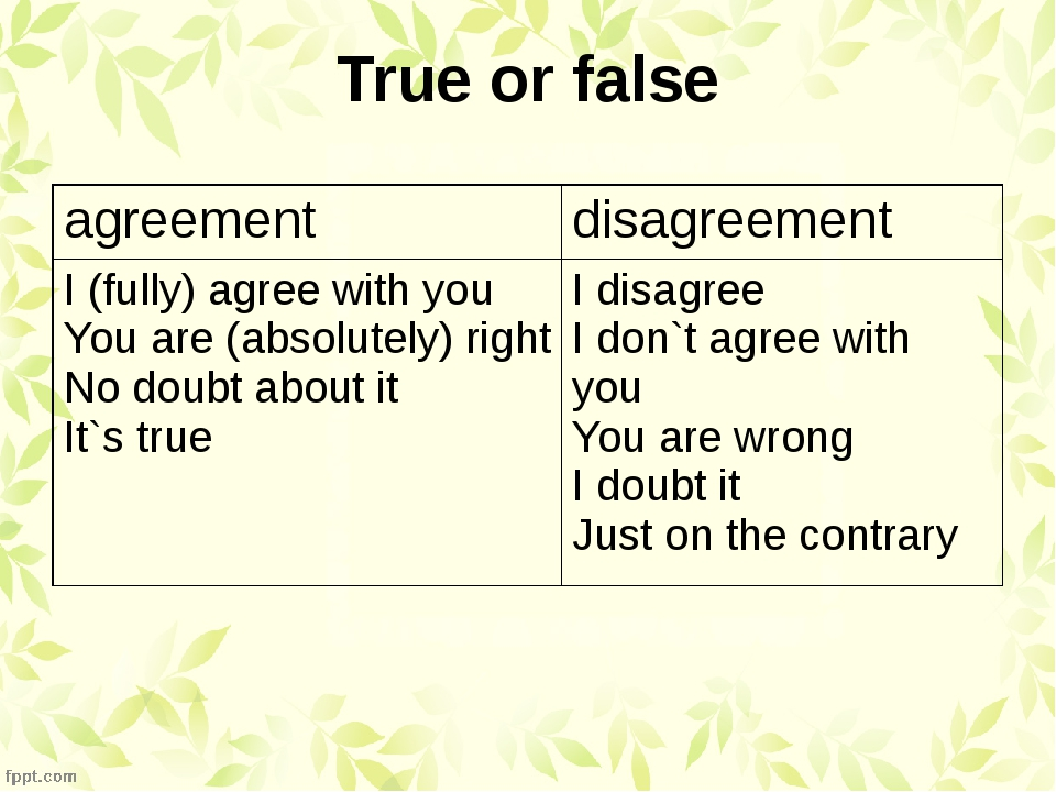 True or false agreement disagreement I (fully)agree with you You are (absolut...