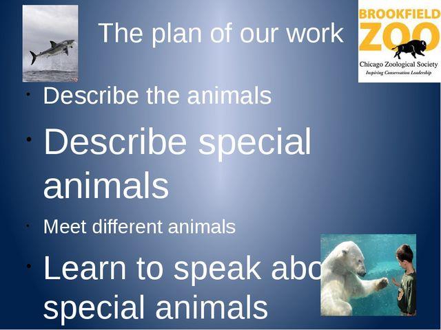 The plan of our work Describe the animals Describe special animals Meet diffe...