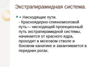 Экстрапирамидная система. + Нисходящие пути. - Красноядерно-спинномозговой пу