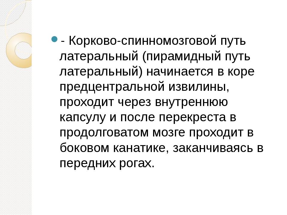 - Корково-спинномозговой путь латеральный (пирамидный путь латеральный) начи...