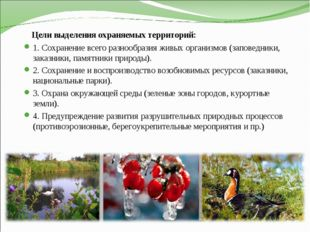 Цели выделения охраняемых территорий: 1. Сохранение всего разнообразия живых