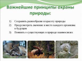 Сохранить разнообразие и красоту природы Предусмотреть значение и место каждо