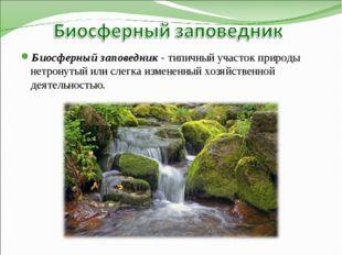 Биосферный заповедник - типичный участок природы нетронутый или слегка измене