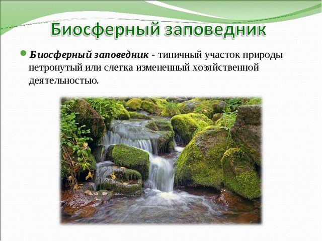 Биосферный заповедник - типичный участок природы нетронутый или слегка измене...