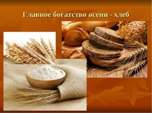 Главное богатство осени - хлеб