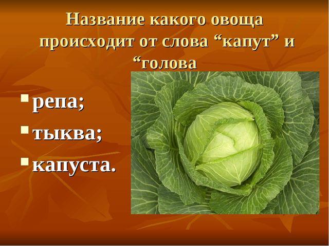 """Название какого овоща происходит от слова """"капут"""" и """"голова репа; тыква; капу..."""