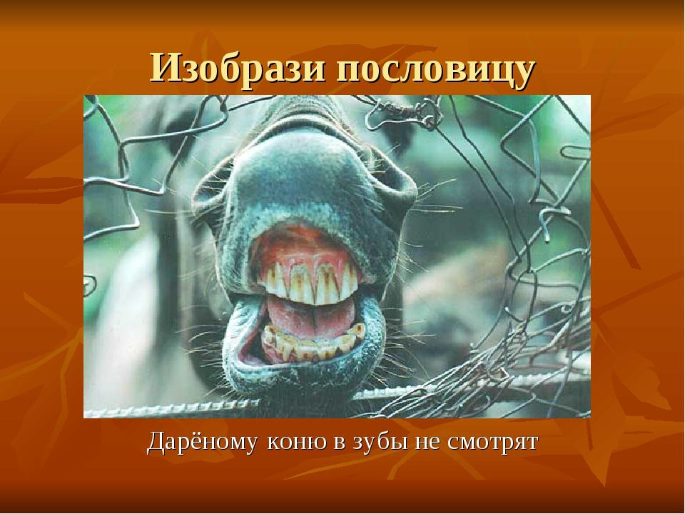 Изобрази пословицу Дарёному коню в зубы не смотрят