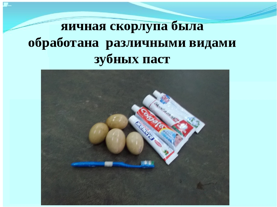 яичная скорлупа была обработана различными видами зубных паст