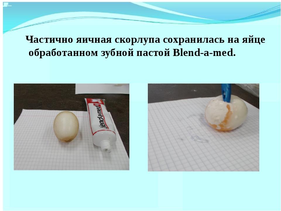 Частично яичная скорлупа сохранилась на яйце обработанном зубной пастой Blen...
