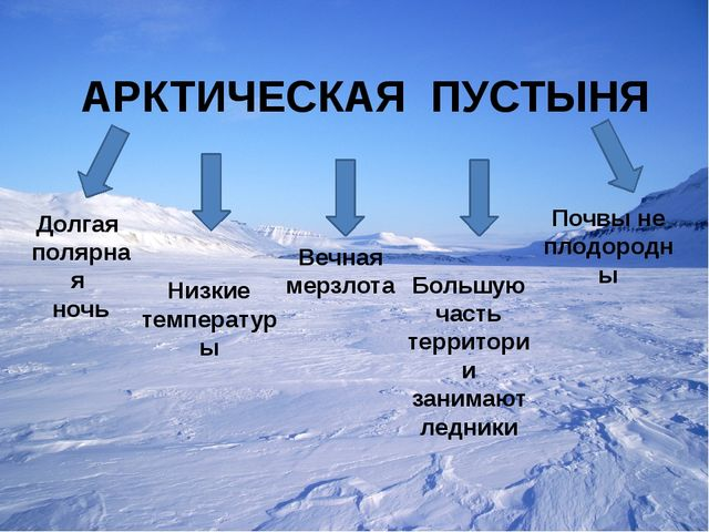 АРКТИЧЕСКАЯ ПУСТЫНЯ Долгая полярная ночь Низкие температуры Вечная мерзлота...