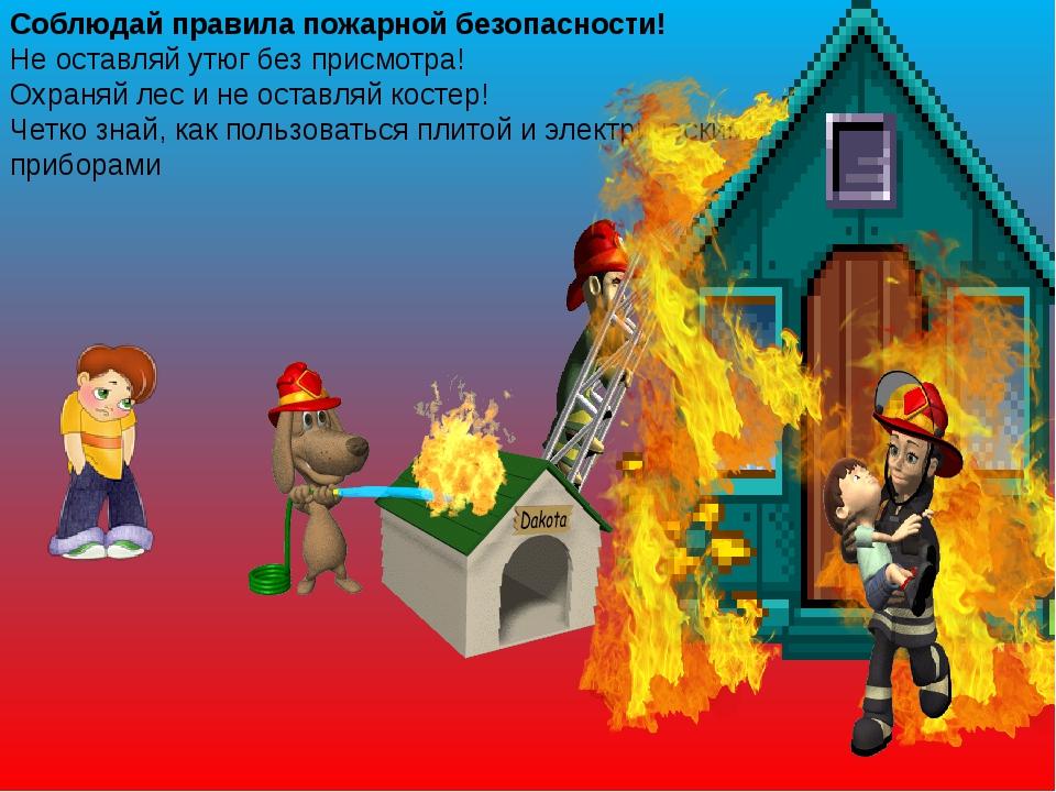 Соблюдай правила пожарной безопасности! Не оставляй утюг без присмотра! Охран...