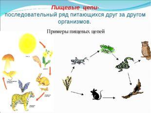 Пищевые цепи- последовательный ряд питающихся друг за другом организмов. Прим