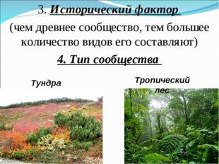 3. Исторический фактор (чем древнее сообщество, тем большее количество видов