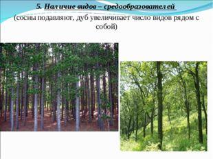5. Наличие видов – средообразователей (сосны подавляют, дуб увеличивает число