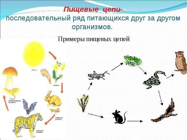 Пищевые цепи- последовательный ряд питающихся друг за другом организмов. Прим...