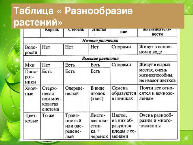 Таблица « Разнообразие растений»