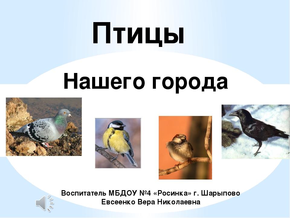 Птицы Нашего города Воспитатель МБДОУ №4 «Росинка» г. Шарыпово Евсеенко Вера...
