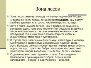 Зона лесов Зона лесов занимает больше половины территории России. В северной