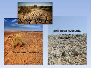 80% всех пустынь мира- каменистые Песчаная пустыня Глинистая пустыня