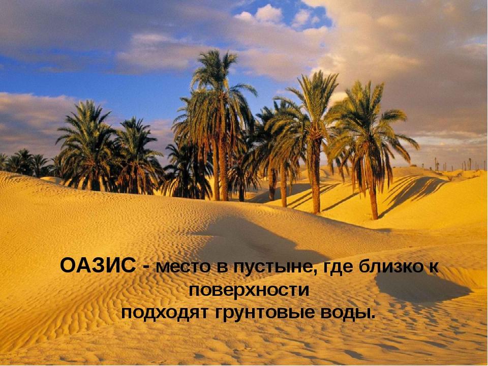 ОАЗИС - место в пустыне, где близко к поверхности подходят грунтовые воды.