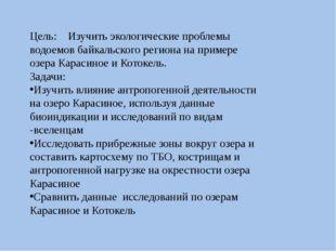 Цель: Изучить экологические проблемы водоемов байкальского региона на примере