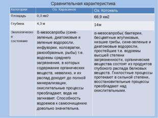 Сравнительная характеристика Категории Оз. Карасиное Оз.Котокель Площадь 0,3