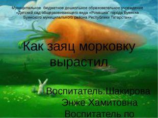 Как заяц морковку вырастил Воспитатель:Шакирова Энже Хамитовна Воспитатель по