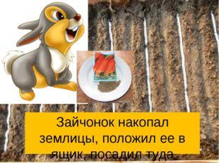 Зайчонок накопал землицы, положил ее в ящик, посадил туда семечки и стал ждат