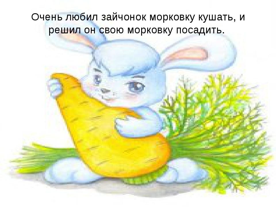 Очень любил зайчонок морковку кушать, и решил он свою морковку посадить.