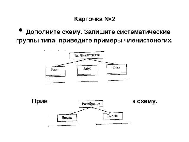 Карточка №2 • Дополните схему. Запишите систематические группы типа, приведи...