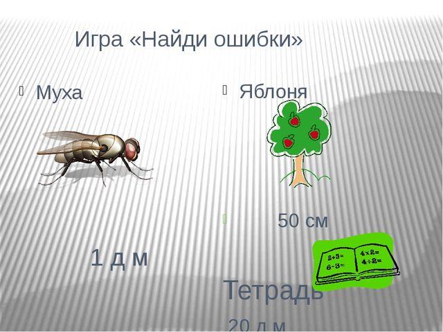 Игра «Найди ошибки» Яблоня 50 см Тетрадь 20 д м Муха 1 д м