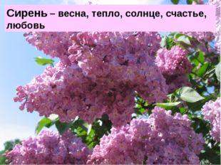 Сирень – весна, тепло, солнце, счастье, любовь