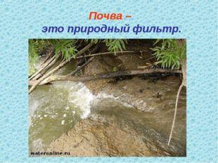 Почва – это природный фильтр.