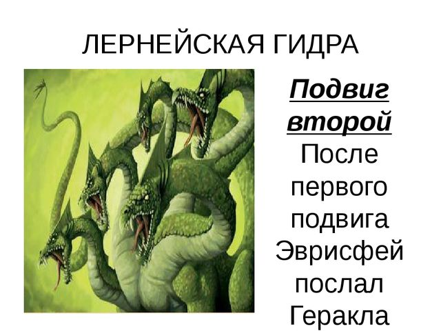 ЛЕРНЕЙСКАЯ ГИДРА Подвиг второй После первого подвига Эврисфей послал Геракла...