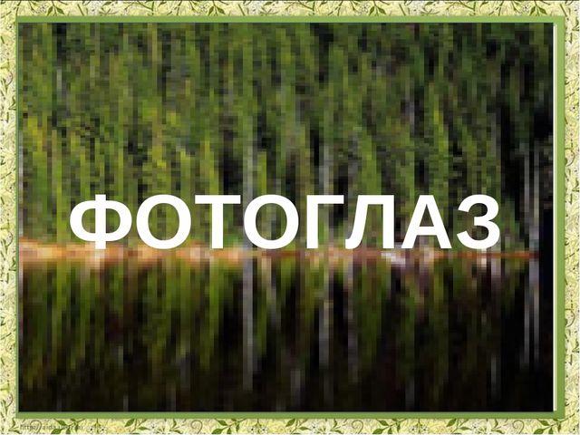 ФОТОГЛАЗ