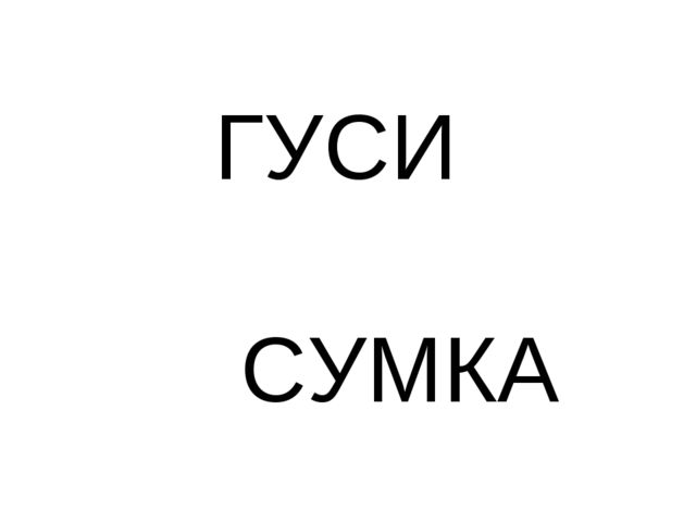 ГУСИ СУМКА