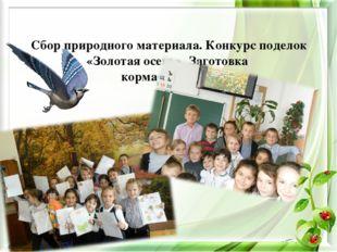 Сбор природного материала. Конкурс поделок «Золотая осень». Заготовка корма