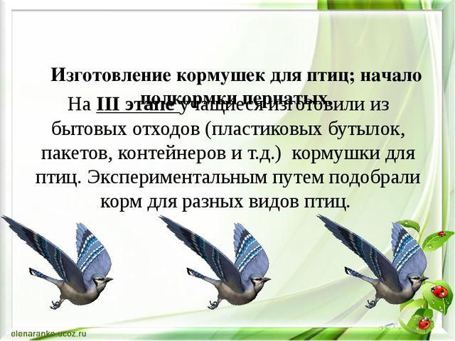 Изготовление кормушек для птиц; начало подкормки пернатых. На IІІ этапе учащ...
