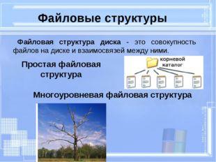 Простая файловая структура Файловые структуры Многоуровневая файловая структу
