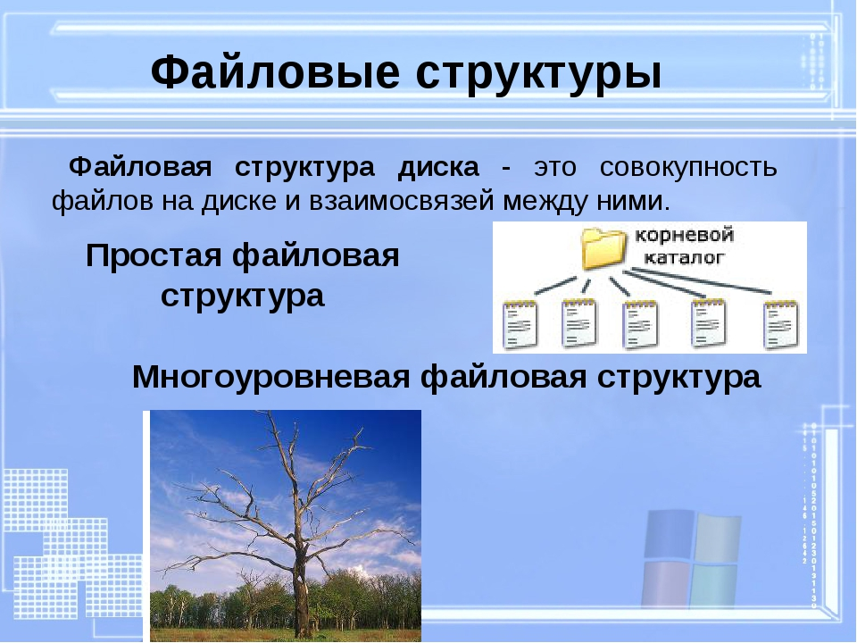 Простая файловая структура Файловые структуры Многоуровневая файловая структу...