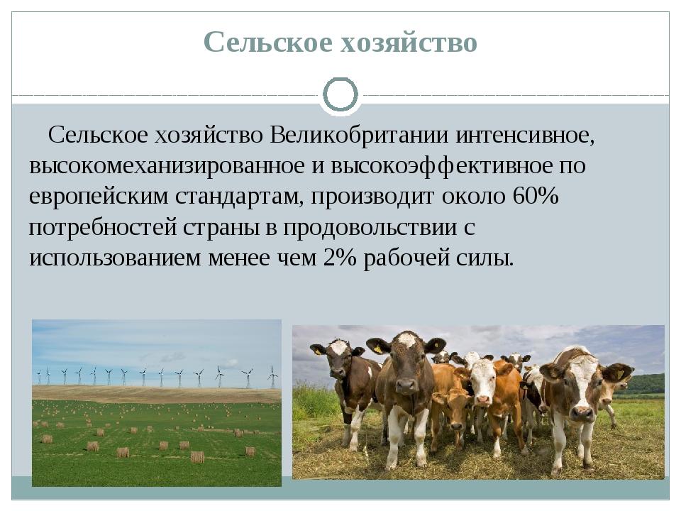 Сельское хозяйство Сельское хозяйствоВеликобритании интенсивное, высокомехан...