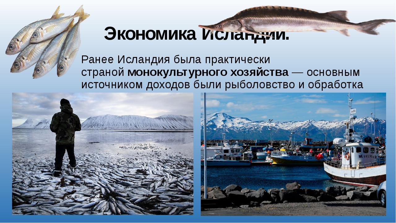 Экономика Исландии. Ранее Исландия была практически страноймонокультурногох...