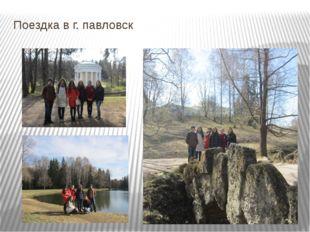 Поездка в г. павловск