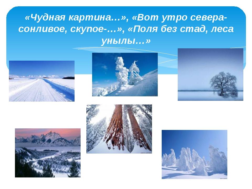 «Чудная картина…», «Вот утро севера-сонливое, скупое-…», «Поля без стад, леса...