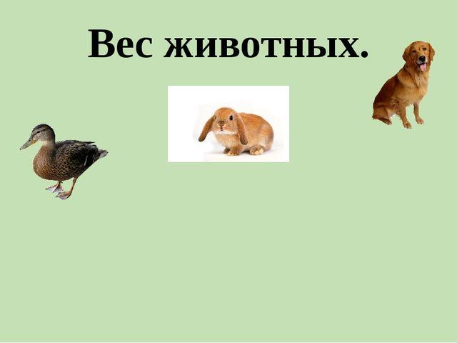 Вес животных.