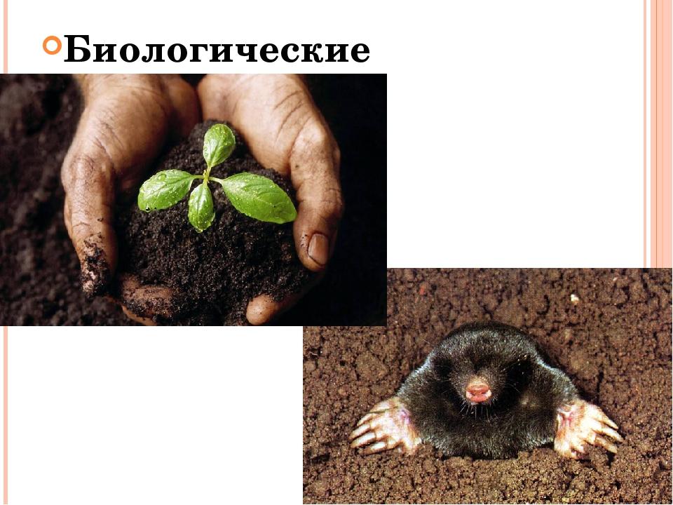 Биологические