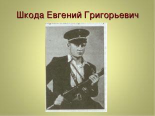 Шкода Евгений Григорьевич
