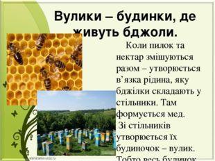 Вулики – будинки, де живуть бджоли. Коли пилок та нектар змішуються разом – у