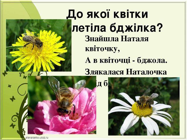 До якої квітки прилетіла бджілка? Знайшла Наталя квіточку, А в квіточці - бдж...